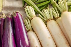 Melanzana porpora cruda organica ed esposizione bianca del ravanello al mercato locale da vendere Fotografia Stock