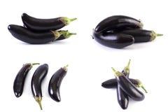 Melanzana su una priorità bassa bianca Le melanzane sono fresche e deliziose Verdura fresca su una priorità bassa bianca Immagini Stock
