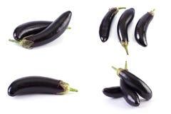Melanzana su una priorità bassa bianca Le melanzane sono fresche e deliziose Verdura fresca su una priorità bassa bianca Immagine Stock Libera da Diritti
