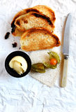 Melba Toast Stock Photos