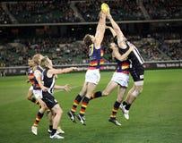 MELBOURNE - 21. AUGUST: Adelaides Lizenzfreies Stockfoto