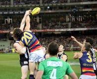 MELBOURNE - AGOSTO 21: Um forte Imagem de Stock Royalty Free