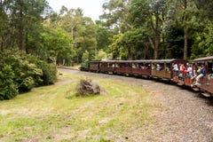 Melbourne, Austrália Trem de sopro do vapor de Billy com passageiros Estrada de ferro estreita histórica nas escalas de Dandenong fotografia de stock royalty free