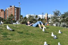 MELBOURNE, AUSTRALIË - AUGUSTUS 14, 2017 - Mensen die op st Kilda het strand ontspannen stock afbeeldingen