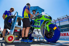 017 MOTUL FIM World Superbike Championship. MELBOURNE, AUSTRALIA – FEBRUARY 26:  On the grid for race 2 of the World SuperSport Championships during the 2017 Royalty Free Stock Photos