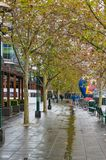 Pedestrian alley on rainy autumn day Royalty Free Stock Images
