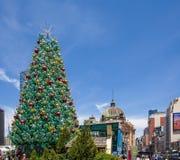 Melbourne, Australien - 16. Dezember 2017: Hoher schöner Weihnachtsbaum am Vereinigungs-Quadrat Stockfoto