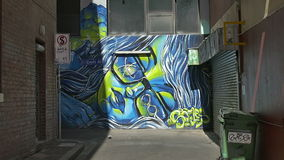 Melbourne graffiti. MELBOURNE, AUSTRALIA - MARCH 21, 2015: Colorful graffiti in back of the Croft alley of downtown, depicts an face of a woman in glasses stock video