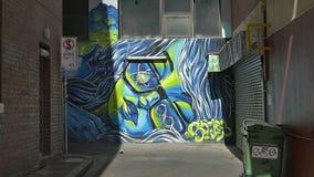 Melbourne graffiti stock video
