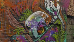 Melbourne graffiti tiger stock video