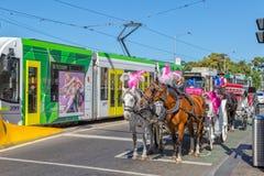 Melbourne miasta wycieczka turysyczna Obraz Royalty Free