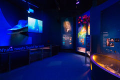 Melbourne Museum. In Victoria, Australia. Photo taken on 11th April, 2015 Royalty Free Stock Images