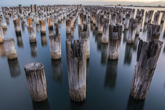 Melbourne Princes Pier, Australia. A shot right after sunset at the Princes Pier in Melbourne, Australia Stock Photo