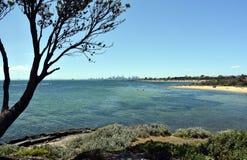 Melbourne skyline from Brighton Beach Gardens  Stock Images