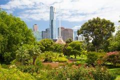Melbourne-Skyline durch Königin Victoria Gardens lizenzfreie stockbilder