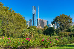 Melbourne Southbank cityscape with National Gallery of Victoria. Melbourne Southbank cityscape with beautiful green garden, park on foreground Royalty Free Stock Photos