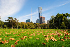 Melbourne-Stadt im Herbst stockbilder