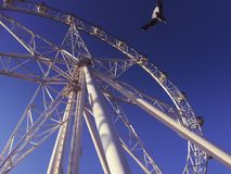 Melbourne Star. Is a giant observation wheel in Docklands, Melbourne Stock Photos