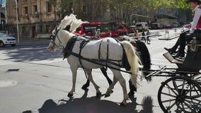 Melbourne tourist coach stock footage