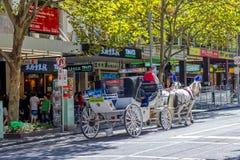 Melbourne turysty trener Zdjęcie Royalty Free
