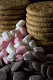 Melcocha y galletas del chocolate Foto de archivo