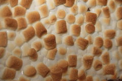 Melcochas tostadas Imágenes de archivo libres de regalías