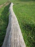 Melden Sie das Gras an Stockbild