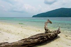Melden Sie einen schönen tropischen Strand an lizenzfreies stockbild
