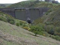 Meldon villebråd, viadukt nära Meldon, Dartmoor royaltyfria bilder