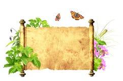 Meldung der Natur lizenzfreie abbildung