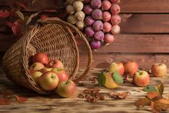 Mele con le verdure sulla tavola Immagine Stock Libera da Diritti