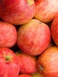 Mele della frutta Fotografie Stock Libere da Diritti
