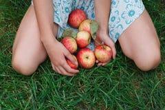 Mele della tenuta della ragazza in gonna, seduta sull'erba Immagine Stock