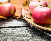 Mele di autunno Immagine Stock Libera da Diritti