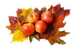 Mele e foglie di autunno isolate su bianco Fotografia Stock