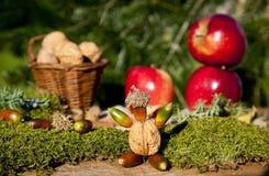 Mele e noci di autunno Fotografia Stock Libera da Diritti