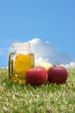 Mele e succo di mele Fotografie Stock Libere da Diritti
