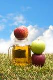 Mele e succo di mele Immagine Stock