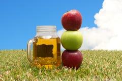 Mele e succo di mele Fotografia Stock