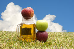 Mele e succo di mele Immagini Stock Libere da Diritti