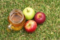 Mele e succo di mele Fotografia Stock Libera da Diritti
