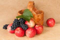 Mele ed uva della frutta Immagini Stock