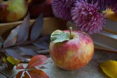 Mele fresche in autunno Mele con polline sulla pelle Fotografia Stock