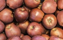 """Mele fresche varietà """"red delicious """"sviluppata nel paese Tirolo del sud, Italia del Nord della mela immagine stock"""