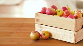 Mele mature in scatola di legno sulla tavola video d archivio
