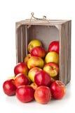 Mele organiche in casella di legno Fotografia Stock