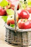 Mele organiche fresche con i fogli Immagini Stock Libere da Diritti