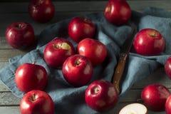 Mele organiche rosse di Macintosh fotografia stock