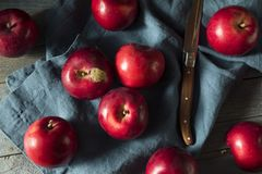Mele organiche rosse di Macintosh immagini stock