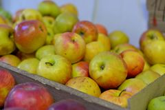 Mele rosse fresche saporite alla drogheria Compri & mangi l'alimento naturale della vitamina Dipartimento del mercato dell'agrico Fotografie Stock Libere da Diritti